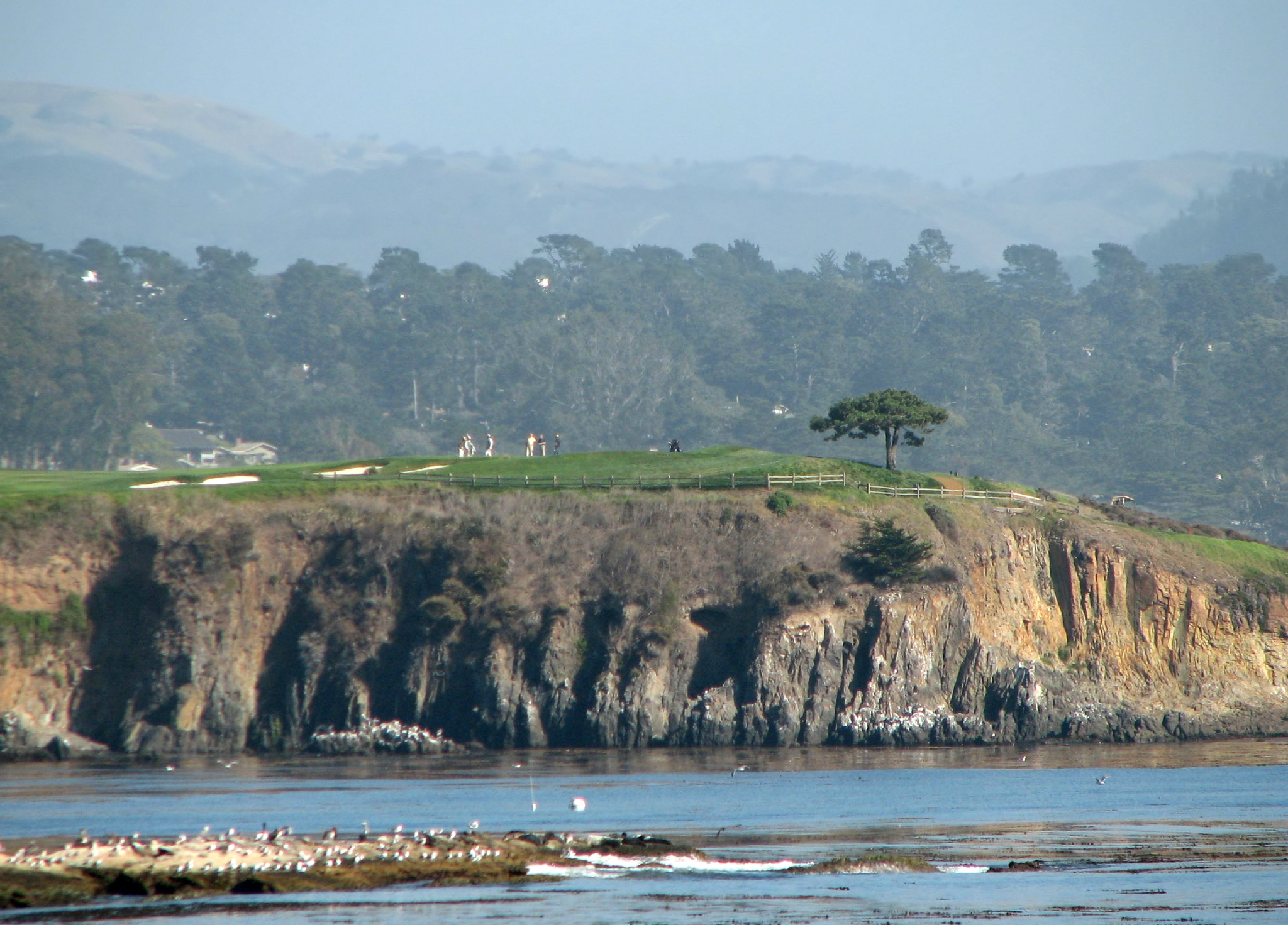 U.S. Open Golf at Pebble Beach